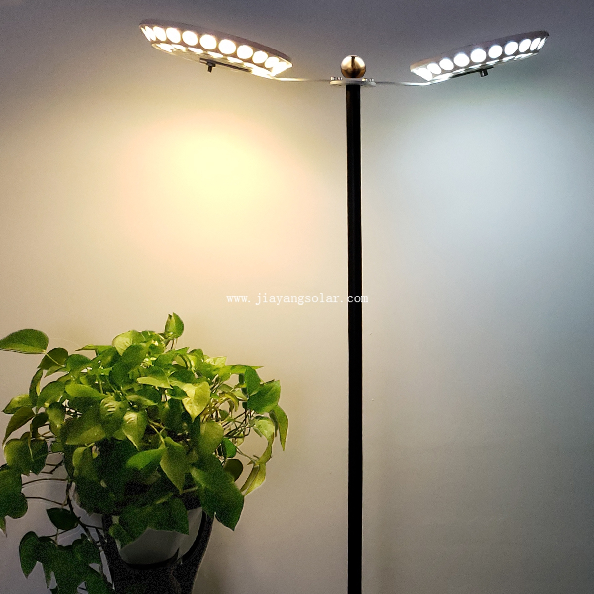 Solar LED Landscape Light